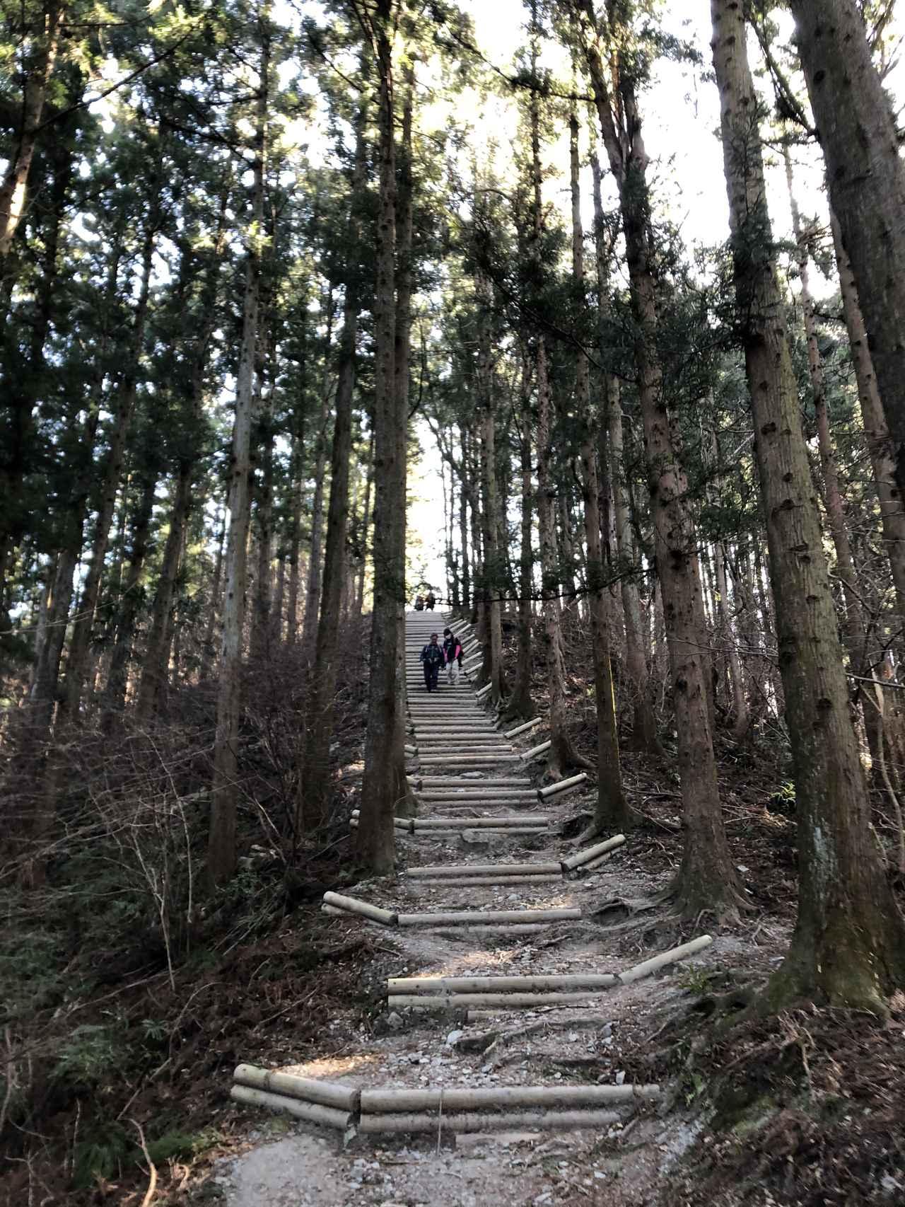 画像: 終盤 階段は使わず、道の端を利用しながら呼吸を整え、登ります