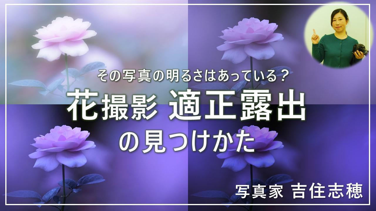 画像: 適正露出の見つけかた youtu.be