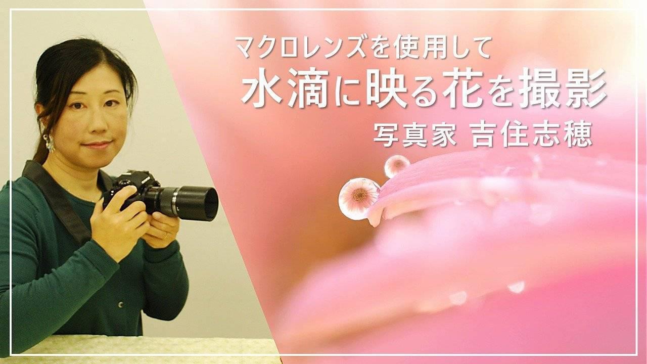 画像: 水滴に映るすてきな世界をマクロレンズで撮影してみよう www.youtube.com