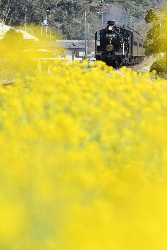 画像2: ©Hiromi Ito