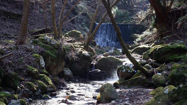 画像: 谷太郎川の流れ