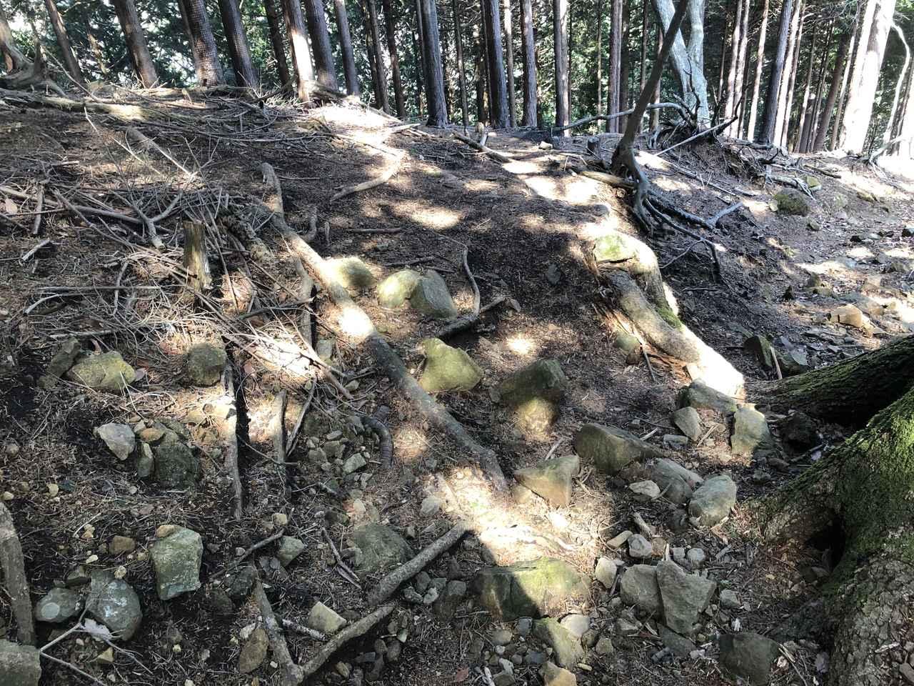 画像: 下りの登山道一例