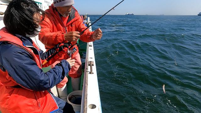 画像: 仕掛けは天秤仕掛けにエサは青イソメ。オモリは15号
