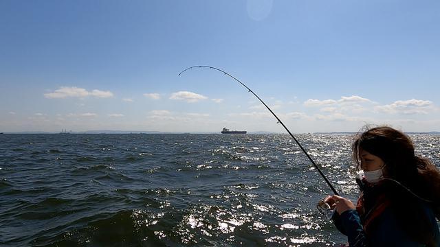 画像: カサゴはアタリも明確でずっしりとした重みも楽しめるので、 初心者の釣りにはぴったりでした。