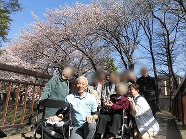 画像4: 【まごころ阿佐ヶ谷2018】「かごの屋」ランチと善福寺川花見