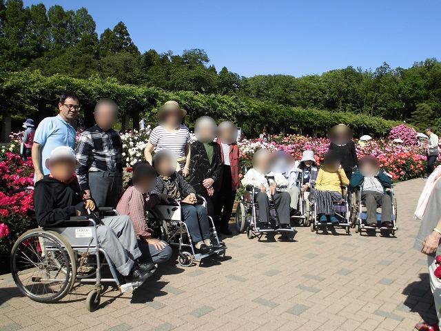 画像8: 神代植物園「春のバラフェスタ」
