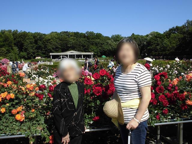 画像4: 神代植物園「春のバラフェスタ」