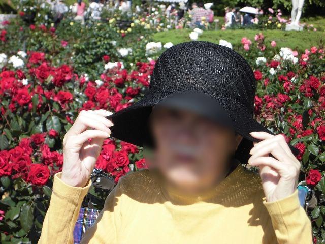 画像3: 神代植物園「春のバラフェスタ」