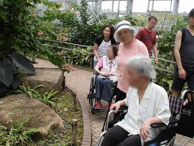 画像: 大温室で熱帯地方の植物を観賞。珍しい植物に皆さん興味津々です。