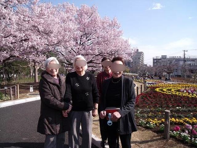 画像2: お花見に行きました