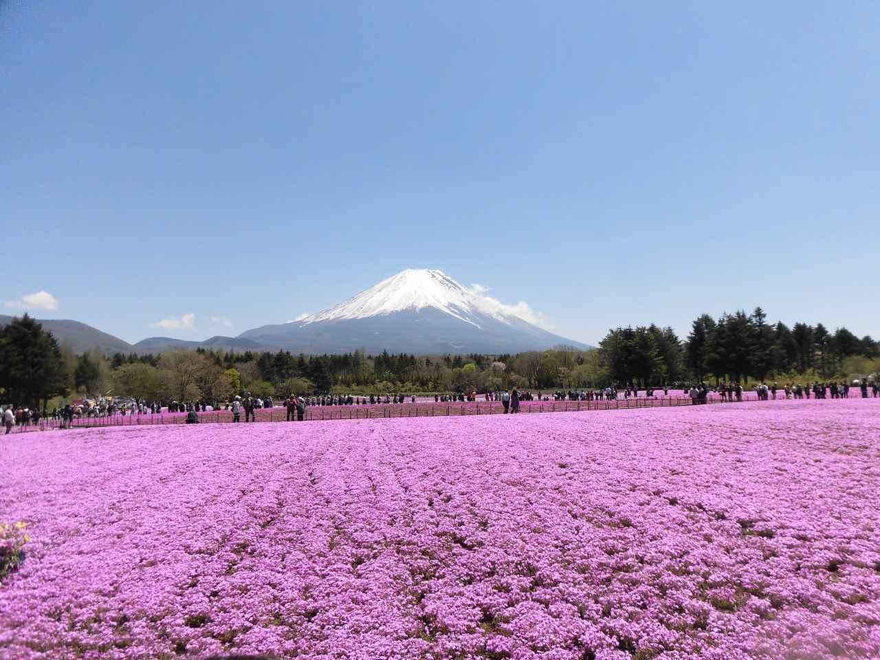 画像1: 【まごころ倶楽部 阿佐ヶ谷2019】春の日帰り旅行