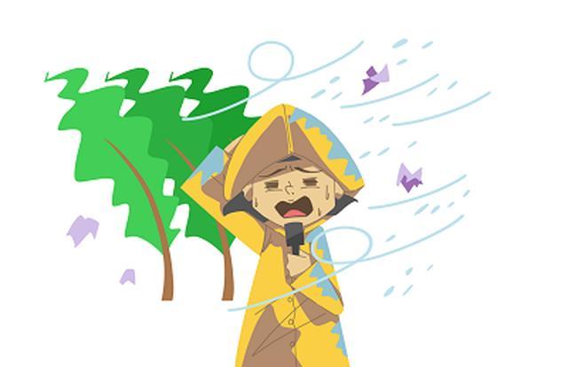 画像: 台風十五号…