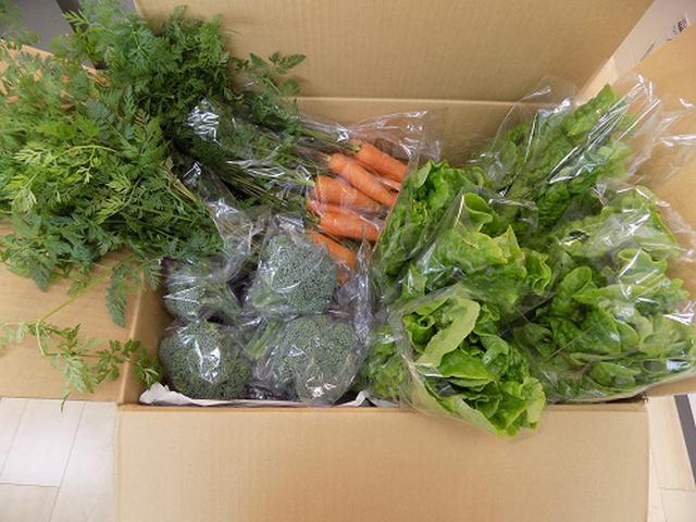 画像1: 第2弾 お野菜