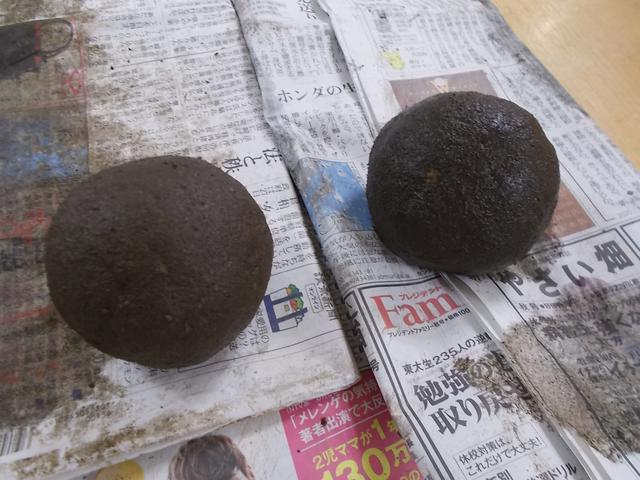 画像2: ポトスの苔玉づくり