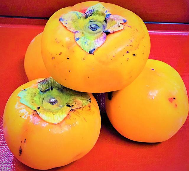 画像6: 芸術祭と富有柿(お取り寄せ企画)