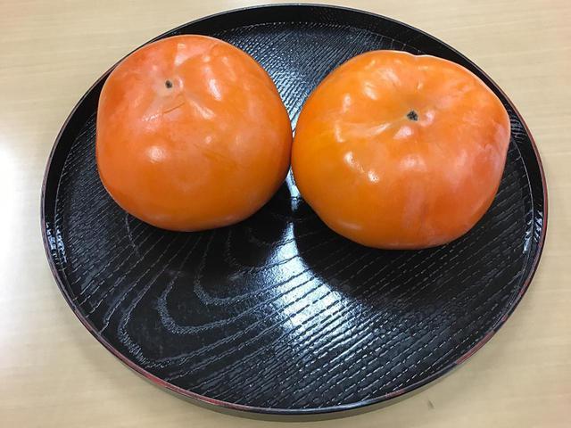 画像3: 夢旅行 岐阜県への旅