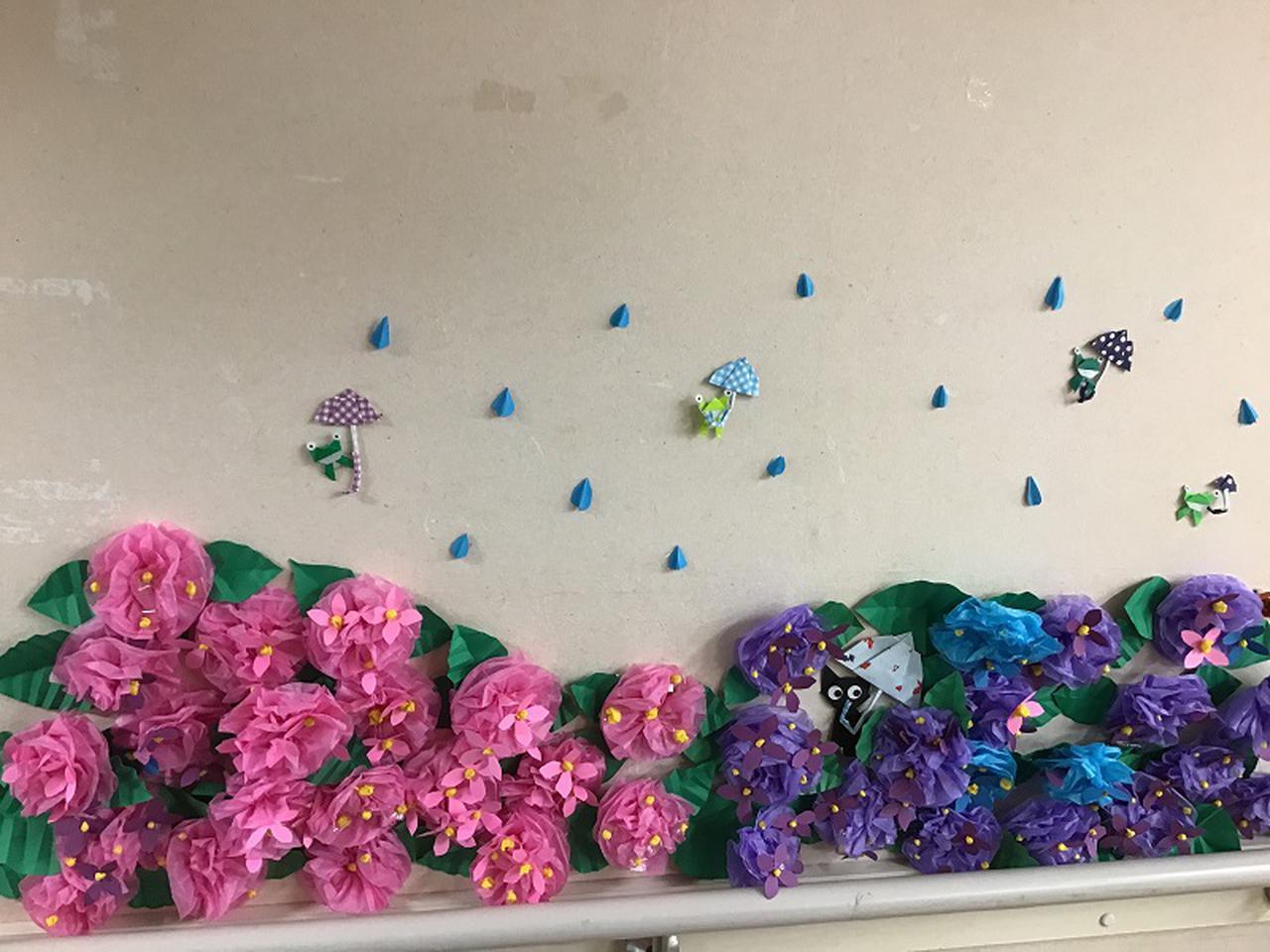 画像1: 紫陽花が咲いています