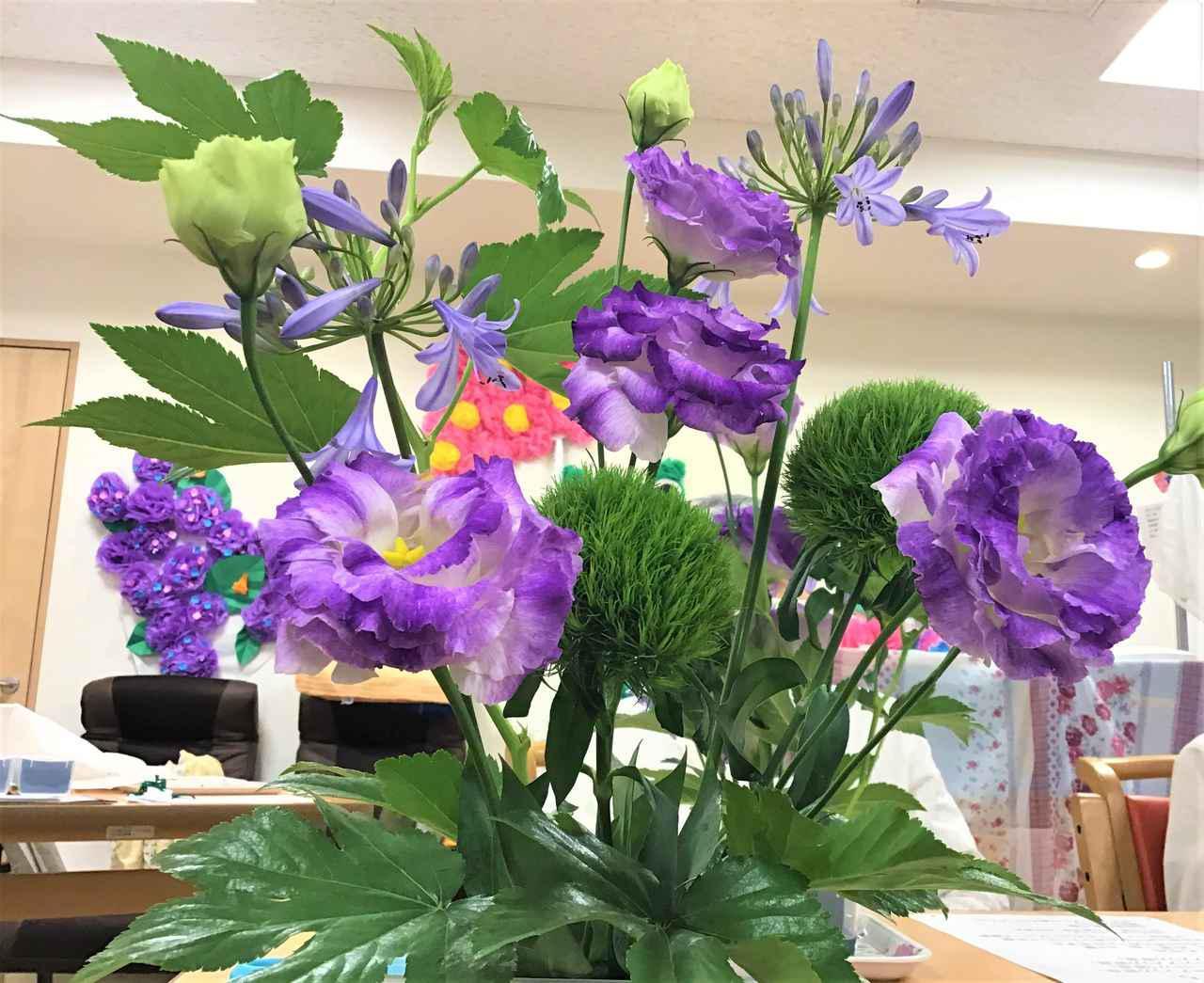 画像2: 本日のお花たちをご紹介いたします。