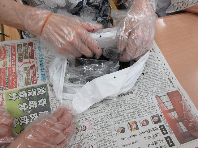 画像3: 苔玉作り