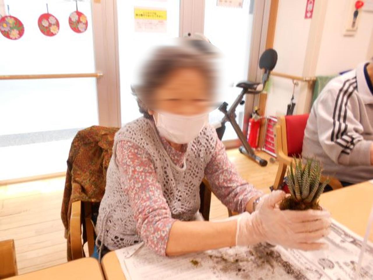 画像5: リクエスト手工芸「苔玉づくり」