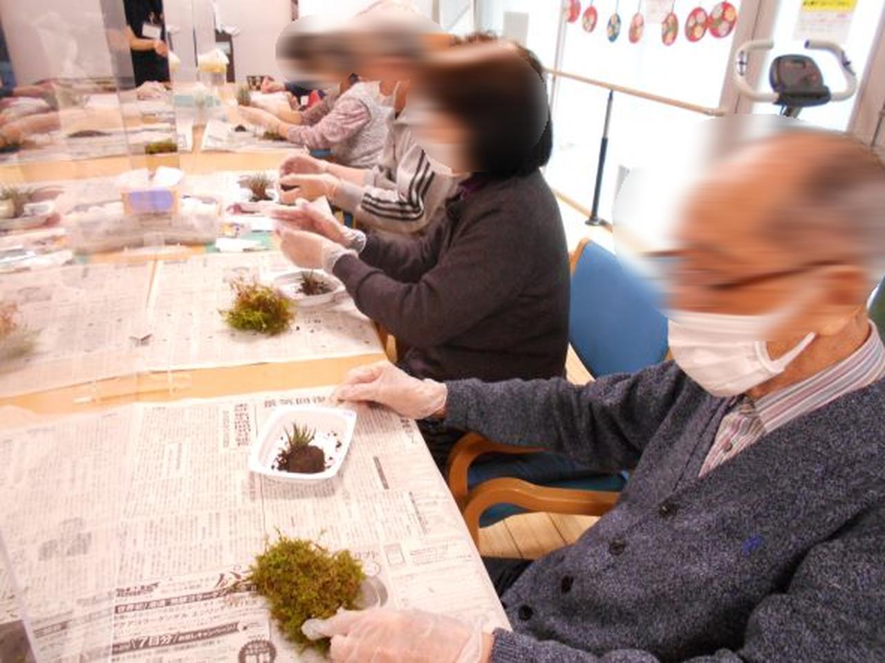 画像1: リクエスト手工芸「苔玉づくり」