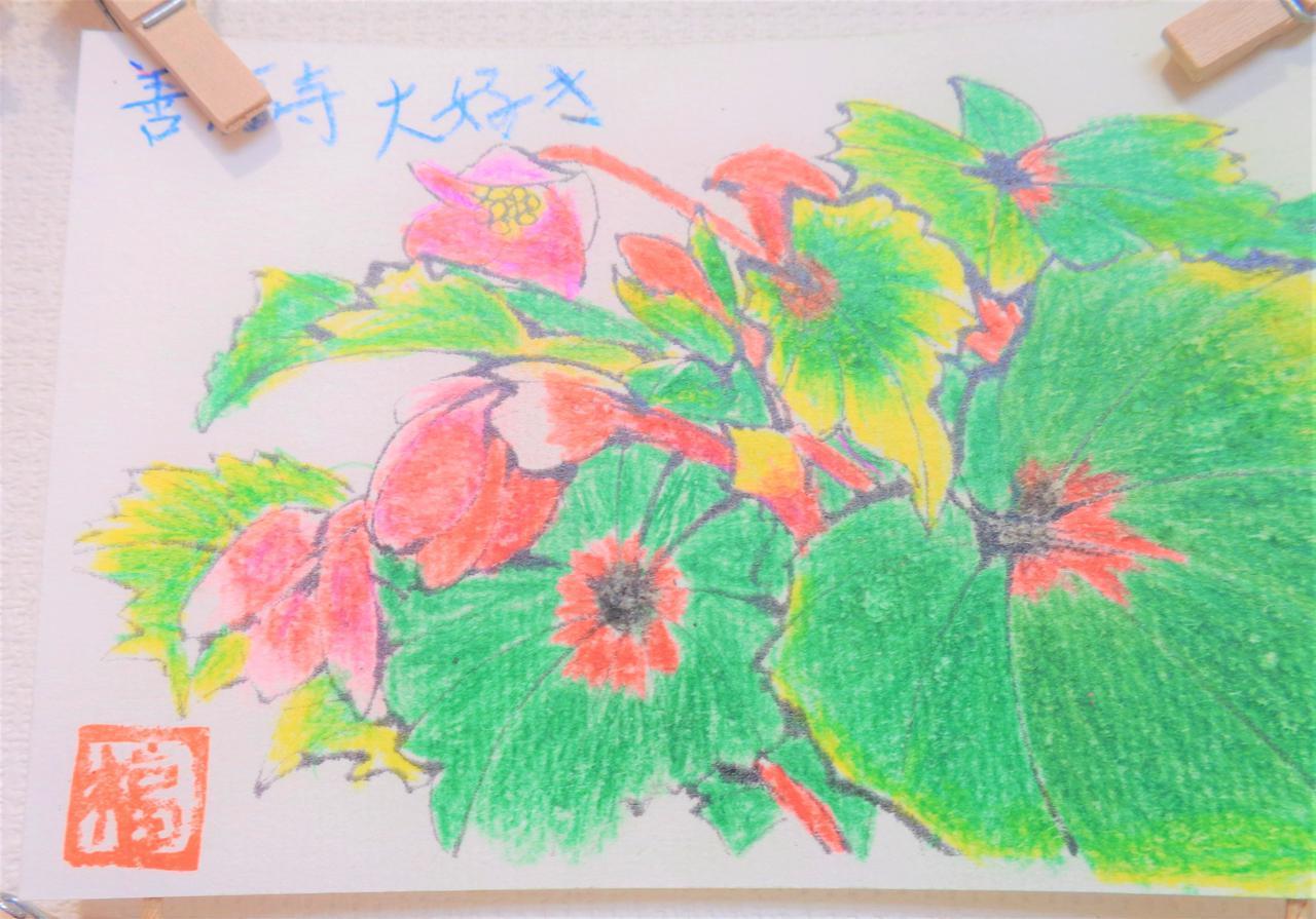 画像2: 絵手紙