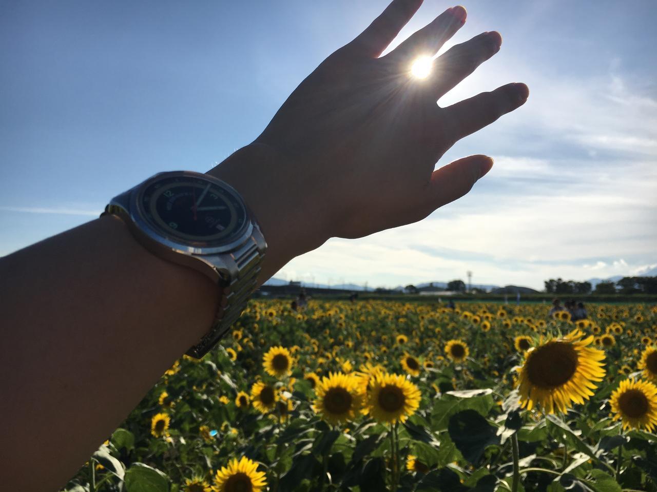 画像: シトロエン三重津さんのブログを見て、あまりにもきれいな写真だったので実際に行...