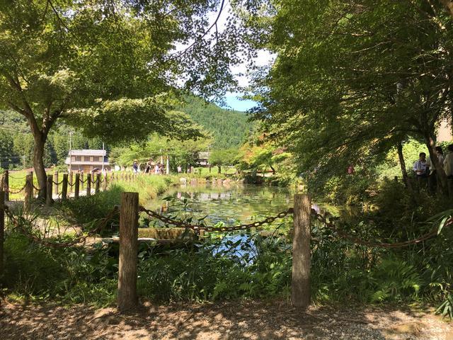 画像16: モネの池 ★岐阜県関市