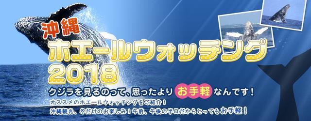 画像: 沖縄ホエールウォッチングへ行こう! - 激安ツアー沖縄旅予約ドットコム