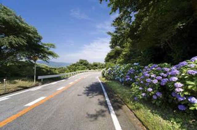 画像: 三ヶ根山スカイライン| 蒲郡市観光協会「ようこそ蒲郡」【愛知県最大の温泉観光地】