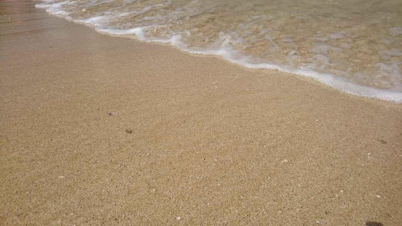 画像2: 沖縄 3泊4日旅 ~食べ物記~