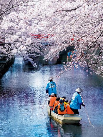 画像: 大垣市HPより www.city.ogaki.lg.jp