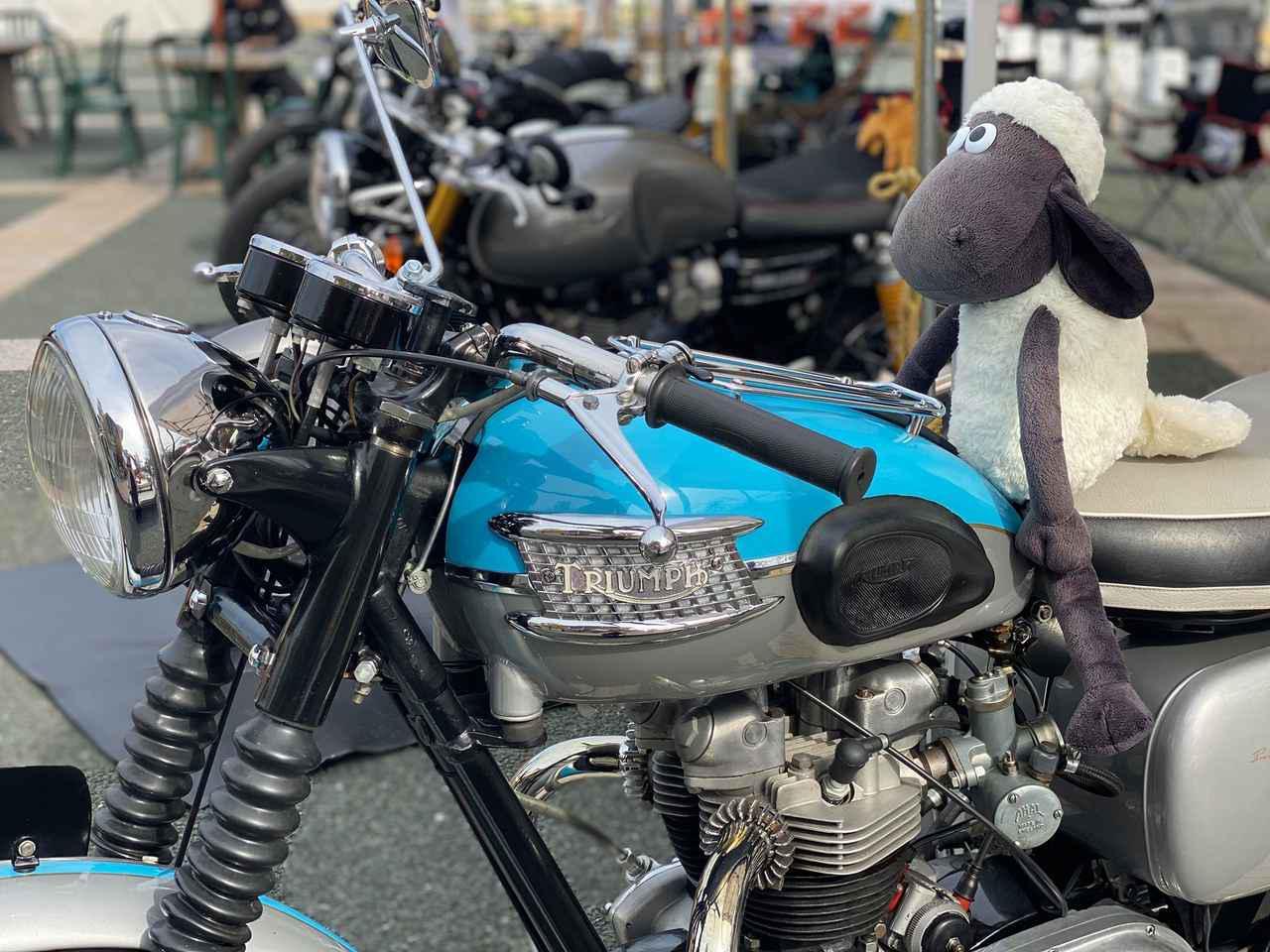 画像: カーくる主催 バイクるおおがきパーティー2019