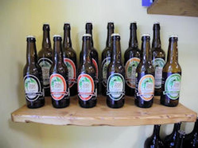 画像: Bici & Birra - Beer Shop Torino