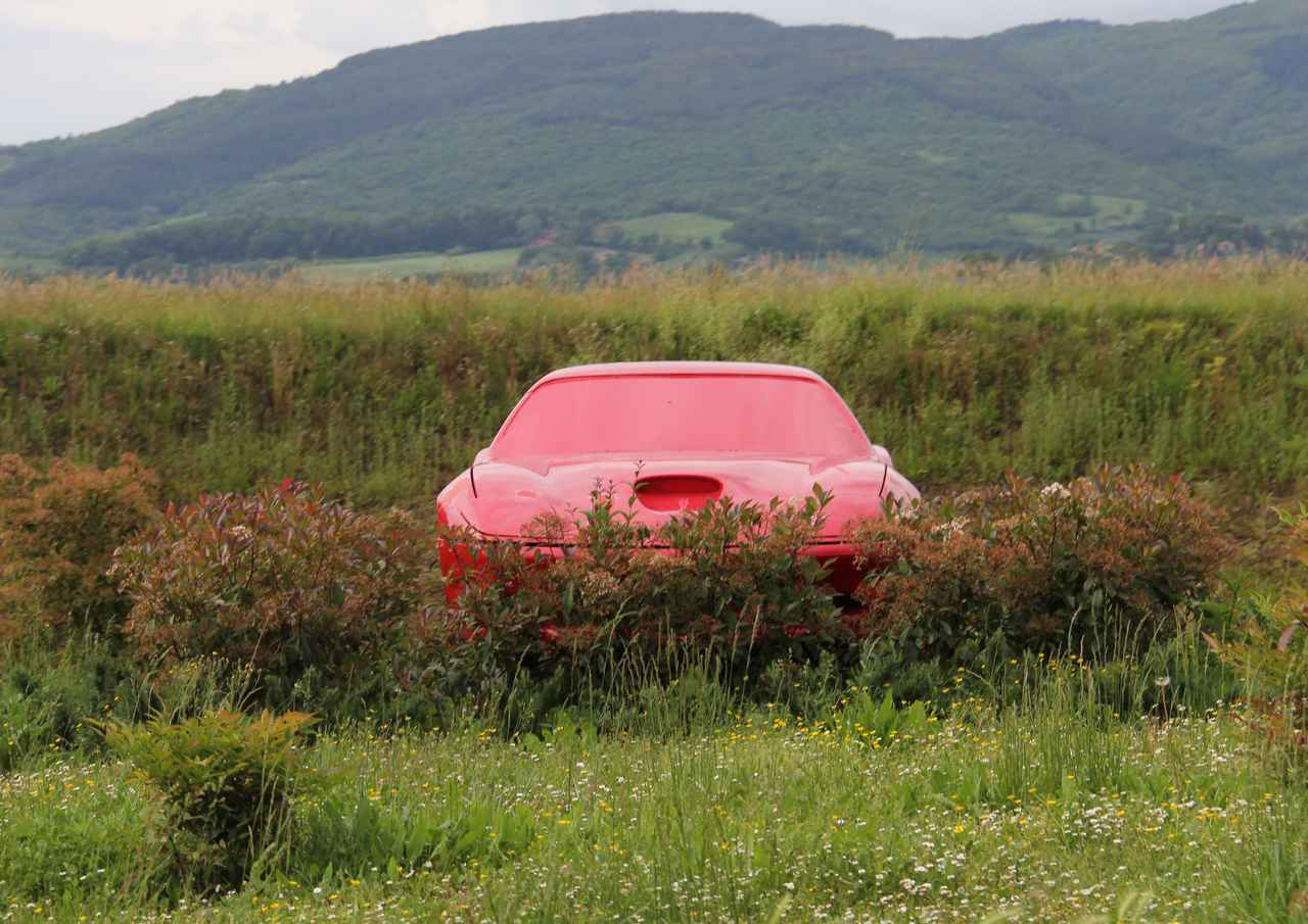 画像: ムジェッロ・サーキットに向かう途中で。草むらに突如現れるフェラーリを模したと思われるオブジェ。