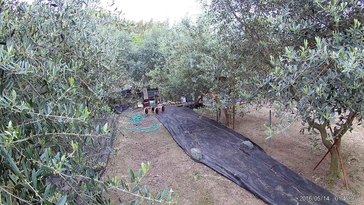 画像: FHD0172 www.youtube.com