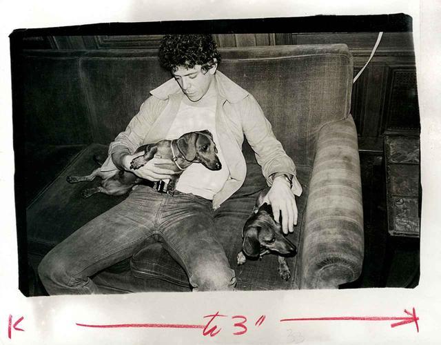 画像6: アンディ・ウォーホル 未発表のポートレイト写真