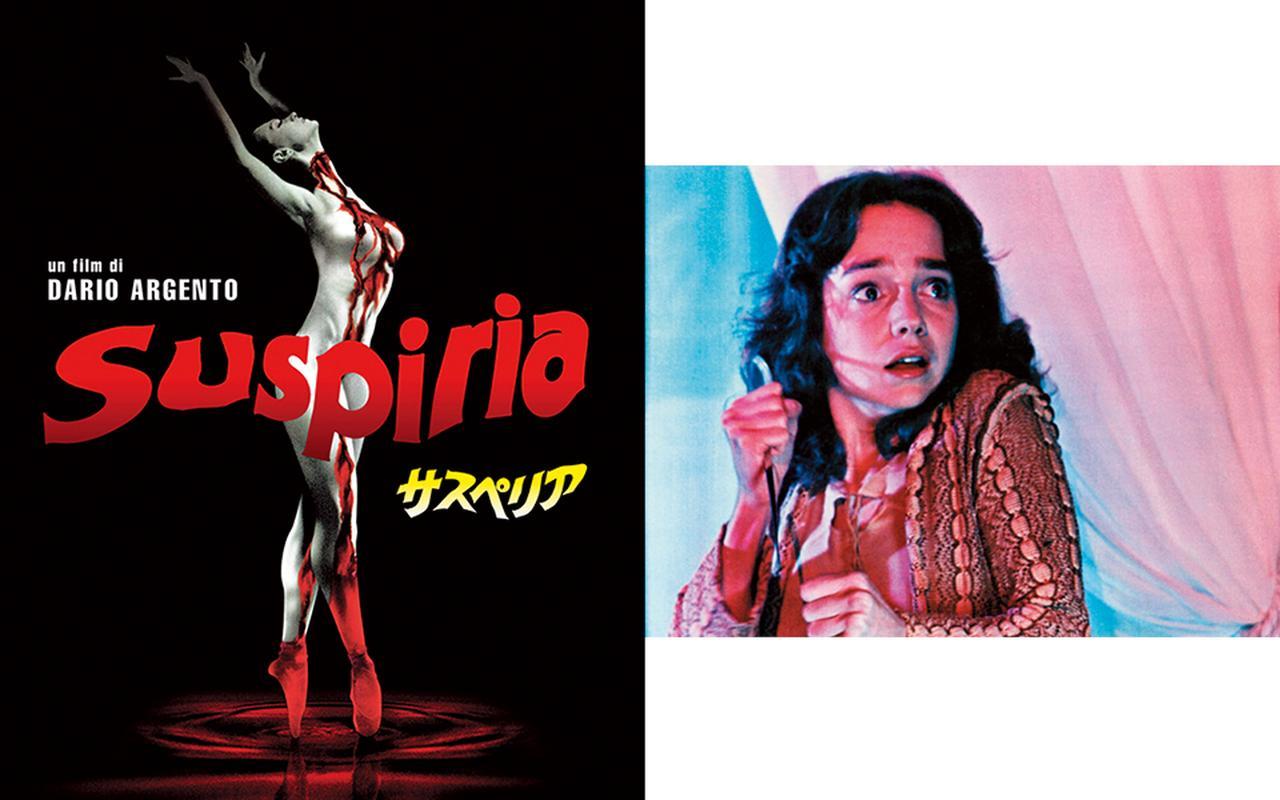Images : 9番目の画像 - 「画家ヒグチユウコの 世界をつくるもの」のアルバム - T JAPAN:The New York Times Style Magazine 公式サイト
