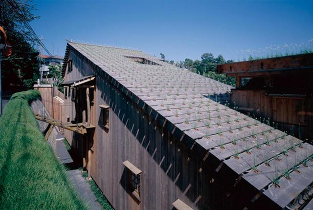 画像: 藤森照信『ニラハウス』(1997年) アーティスト赤瀬川原平の自宅として設計。屋根にはニラの鉢植えが設置され、時間とともに成長するエコロジカルな家を目指した © AKIHISA MASUDA
