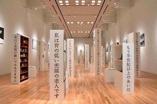 画像: 「自己紹介」の展示風景 COURTESY OF TOKYO OPERA CITY ART GALLERY