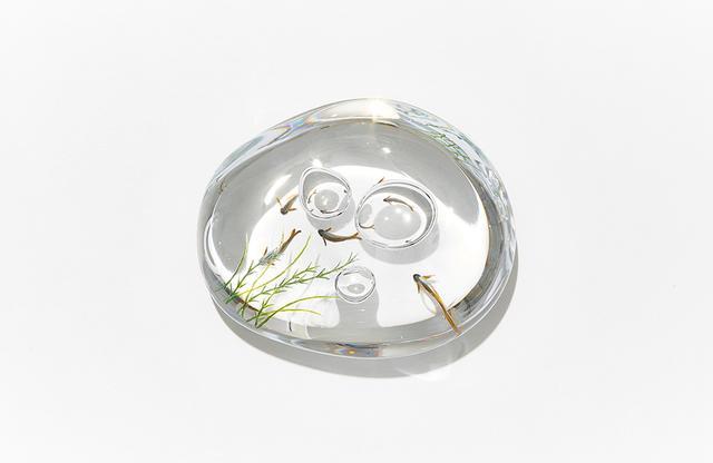 画像: ゆっくり立ちのぼる泡、すいすいと泳ぐ若鮎。「澄んだ清流をかたわらに」。そんな文を添えて送りたくなる 水玉(すいぎょく)アユ ¥35,000