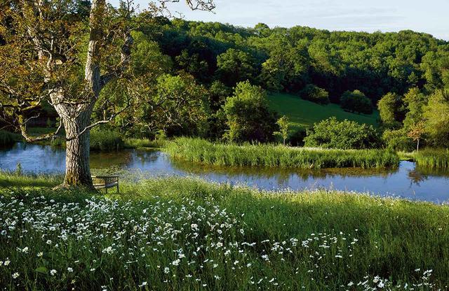 画像: マキューアンがいくつかの小さな水源から地下水を引き込んでつくった湖。 湖のそばのクルミの木まで続くフランスギクが咲く草むら