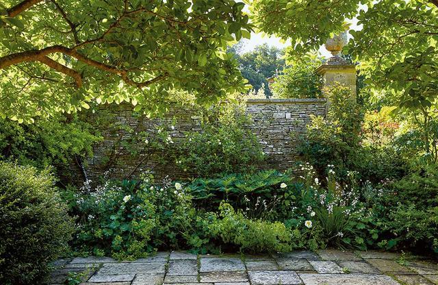 画像: マキューアンの書斎の外にある花壇。 シャクヤク、アヤメ、アマドコロに囲まれて モクレンが花を咲かせている