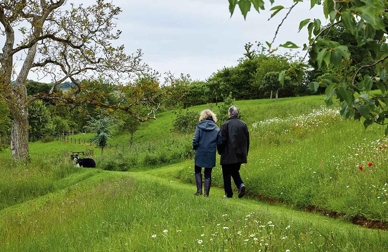Images : 4番目の画像 - 「野趣あふれる庭園の物語 <後編>」のアルバム - T JAPAN:The New York Times Style Magazine 公式サイト