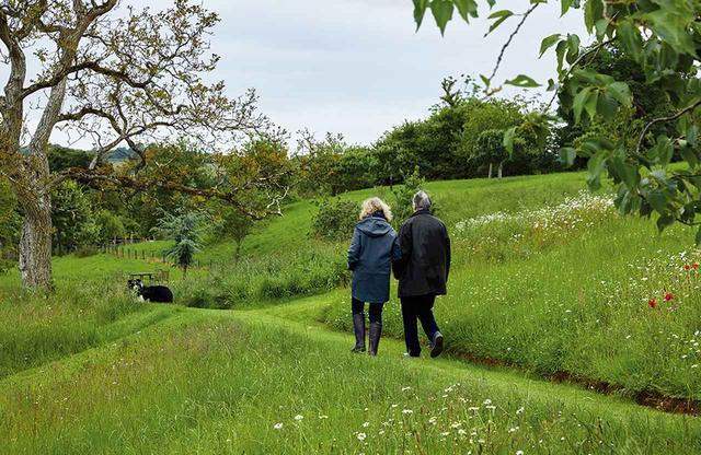 画像: チャールズ・ダーウィンのサンドウォークに インスピレーションを得てつくった牧草地の小道を、 愛犬のラブを連れて散策するマキューアンとマカフィー