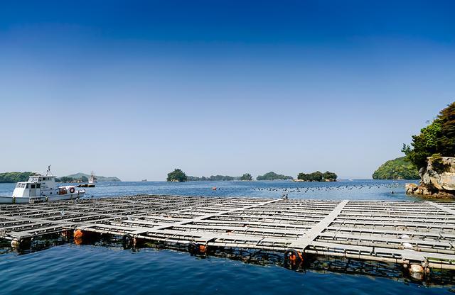 画像: 核入れの終わったあこや貝の養生施設。海中に貝の入った容器が並ぶ