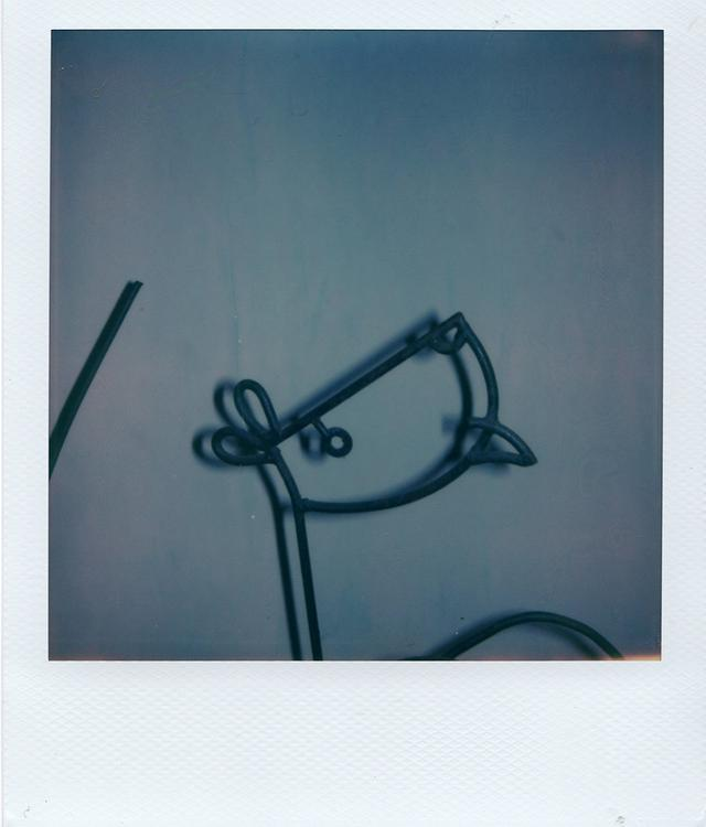 画像4: ポラロイド写真で表現した フランチェスコ・リッソの クリエイティブな世界