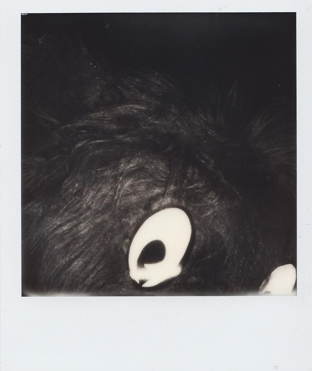 画像1: ポラロイド写真で表現した フランチェスコ・リッソの クリエイティブな世界