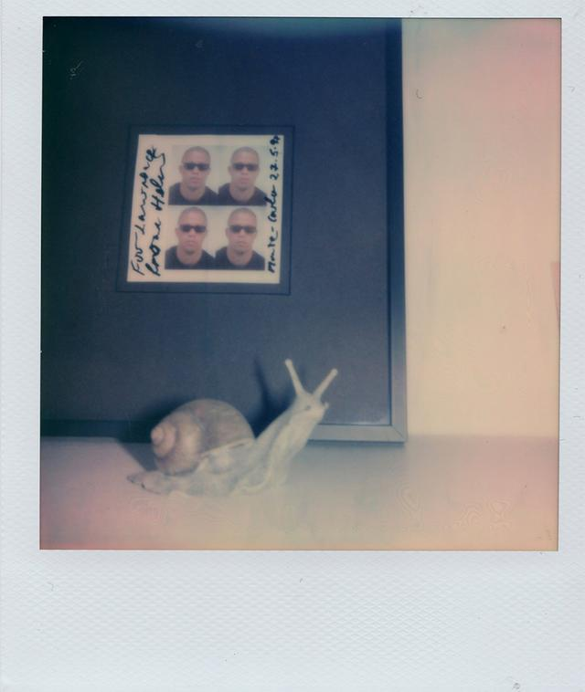 画像2: ポラロイド写真で表現した フランチェスコ・リッソの クリエイティブな世界