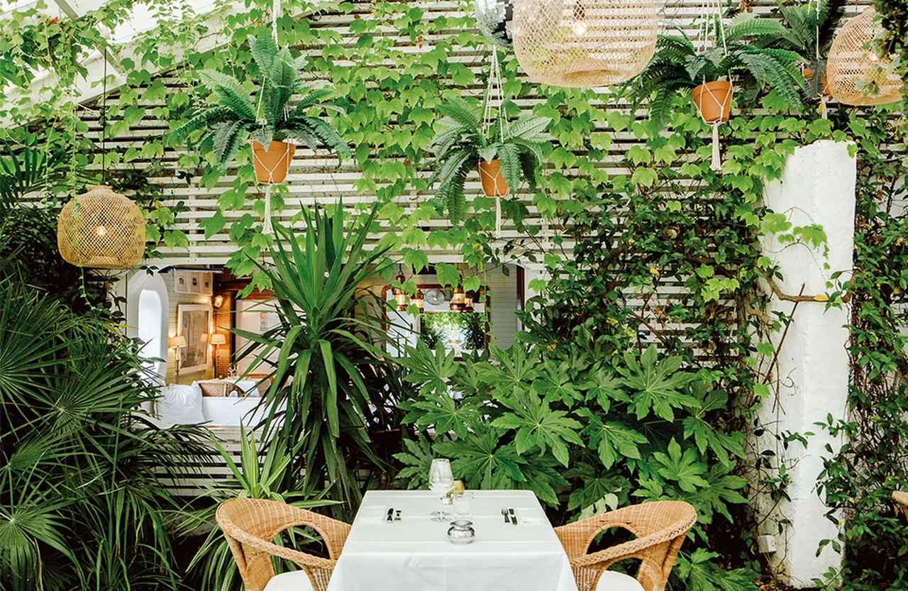 Images : 8番目の画像 - 「ミモザの香りと砂丘に導かれ、 フランスにおけるケープ・コッド カップ・フェレ半島へ」のアルバム - T JAPAN:The New York Times Style Magazine 公式サイト